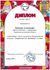 kapkova-a-2-kl-2